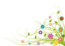 Esquina floral linda Imagen de archivo libre de regalías