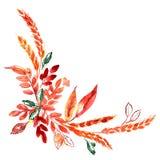 Esquina pintada a mano de la acuarela con los oídos y las hojas anaranjadas del otoño Decoración de la acción de gracias Imagenes de archivo