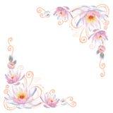 Esquinas elegantes de la flor de las curvas Imagen de archivo