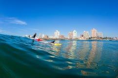 Esquis de água surfando Durban das salvas-vidas Fotografia de Stock