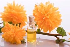 Essência da flor do botão de ouro Imagens de Stock Royalty Free