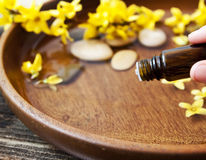 Essência essencial da flor de Oil.Aromatherapy Imagem de Stock Royalty Free