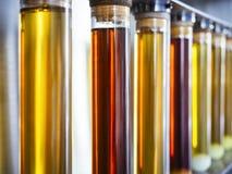 Essai d'huile d'éthanol dans l'industrie de recherches de carburant de tube photo stock