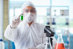Essai de chimiste dans l'extrait de cannabis de laboratoire pour p médical photos stock