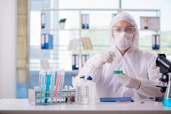 Essai de chimiste dans l'extrait de cannabis de laboratoire pour p médical photographie stock libre de droits