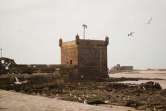 Essaouira堡垒 库存图片