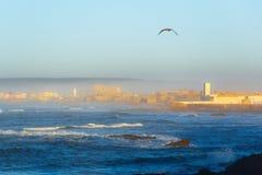 Essaouira, επαρχία Μαρακές Στοκ εικόνες με δικαίωμα ελεύθερης χρήσης