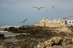 Essaouira Стоковая Фотография RF