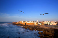 Essaouira Fortress, Morocco Royalty Free Stock Photo
