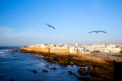 Essaouira Fortress, Morocco. Royalty Free Stock Photo