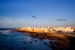 Essaouira Fortress, Morocco Royalty Free Stock Images