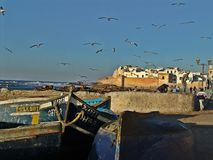 Essaouira gammal port i Marocko arkivbilder