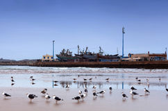Essaouira Harbour, Morocco Stock Photos