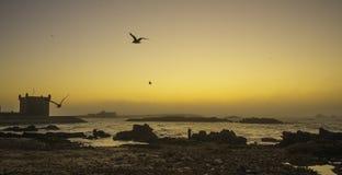 Essaouira Marocko, Afrika Fotografering för Bildbyråer