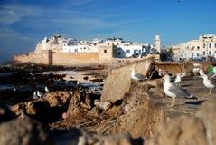 Essaouira. Marokko Royalty-vrije Stock Afbeeldingen