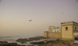 Essaouira, Morocco, Africa. Coastline in Essaouira, Morocco, Africa stock photography