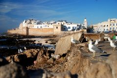 Essaouira. Morocco. Essaouira is a city in the western Moroccan economic region of Marrakech-Tensift-Al Haouz, on the Atlantic coast. Since the 16th century, the Royalty Free Stock Images