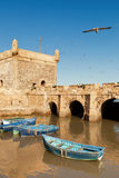 Essaouira Morocco fort. With boats and seagulls Stock Image