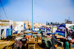Essaouira, Morocco - November 05, 2015: Group of Fishermen selling fresh fish on the market in the old port of the town stock image