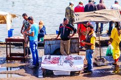 Essaouira, Morocco - November 05, 2015: Group of Fishermen selling fresh fish on the market in the old port of the town royalty free stock photo