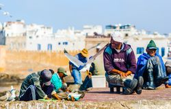 Essaouira, Morocco - November 05, 2015: Group of Fishermen preparing the catch in the port of the city stock photos