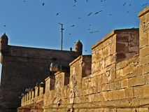 Essaouira old port in Morocco royalty free stock photos
