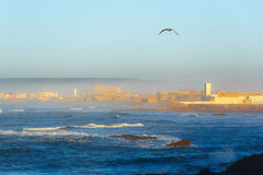 Essaouira, província C4marraquexe Imagens de Stock Royalty Free