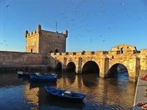 Essaouira stary port w Maroko zdjęcia royalty free