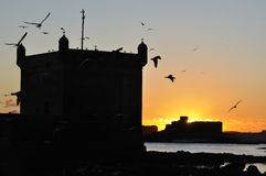 Essaouira at the sunset Royalty Free Stock Photography