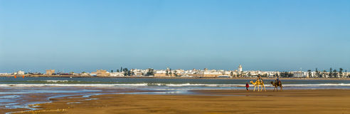 Essaouira skyline royalty free stock photo
