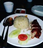 Essayez la nourriture chinoise délicieuse du riz de poulet images libres de droits