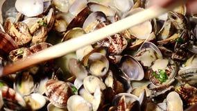 Essbare Meerestiere, Muscheln stock footage