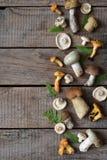 Essbare wilde Pilzgrenze, Boletus, russule, Pfifferlinge auf dem hölzernen Hintergrund Stockfotos