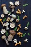 Essbare wilde weiße Pilze, Boletus, russule, Pfifferlinge auf dem hölzernen Hintergrund Lizenzfreie Stockfotos