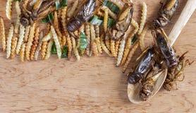 Essbare Wurmbambusinsekten knusperig und Grillen auf einer hölzernen Tabelle Das Konzept von Proteinnahrungsquellen von den Insek lizenzfreie stockfotografie