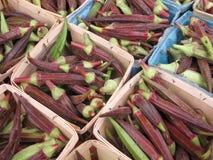 Essbarer Eibisch für Verkauf an einem Markt der Landwirte Lizenzfreies Stockfoto