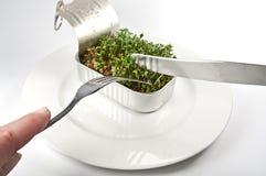 Essen der Brunnenkresse Lizenzfreie Stockbilder