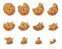 Essen des Plätzchens Stockbild