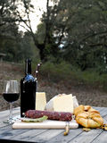 Essen im Freien mit Brot, Käse, Wurst und Rotwein lizenzfreies stockfoto