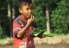 Essen Sie auf dem Reisgebiet Stockbilder