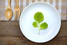 Essen Sie gesundes essen Gemüse Stockfotografie