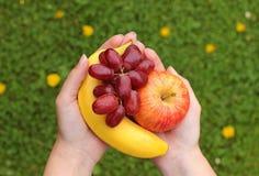 Essen Sie mehr Früchte: Hände, die verschiedene Früchte halten Lizenzfreie Stockbilder