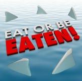 Essen Sie oder seien Sie gegessener Haifisch-Flossen-Schwimmen-heftiger tödlicher Wettbewerb Stockfoto