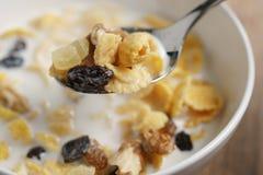 Essen von Corn Flakes mit Früchten und Nüssen in der weißen Schüssel Lizenzfreies Stockfoto