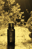 Essence bottle in retro tones Royalty Free Stock Images