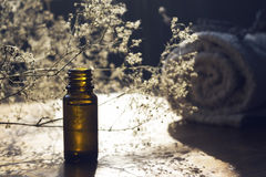 Essence bottle and small white flowers and towel Royalty Free Stock Image