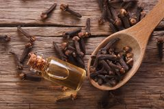 Essence of cloves in the bottle macro  horizontal top view Stock Photography