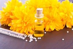 Essence de fleur de renoncule Photographie stock libre de droits
