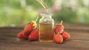 Essence de fraisier commun sur la table dans le beau pot en verre banque de vidéos