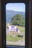 Essence de la Suisse Photographie stock